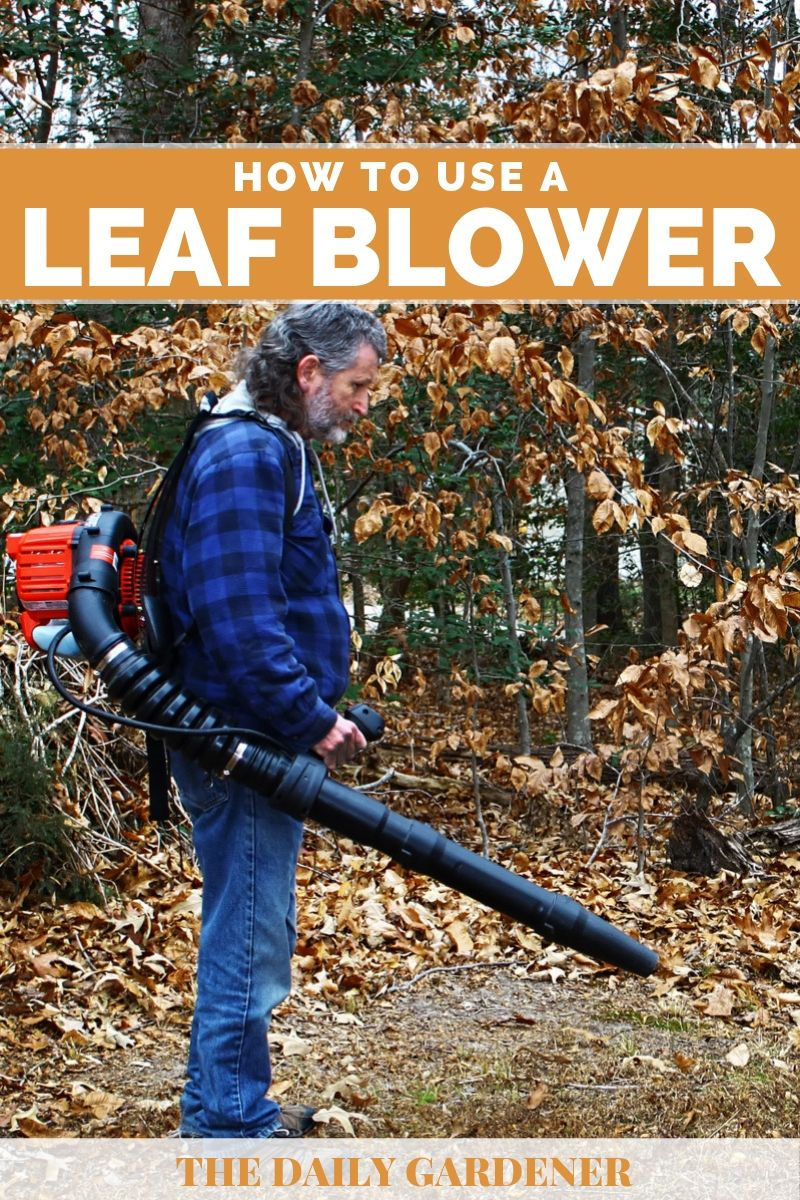 How to Use a Leaf Blower 1