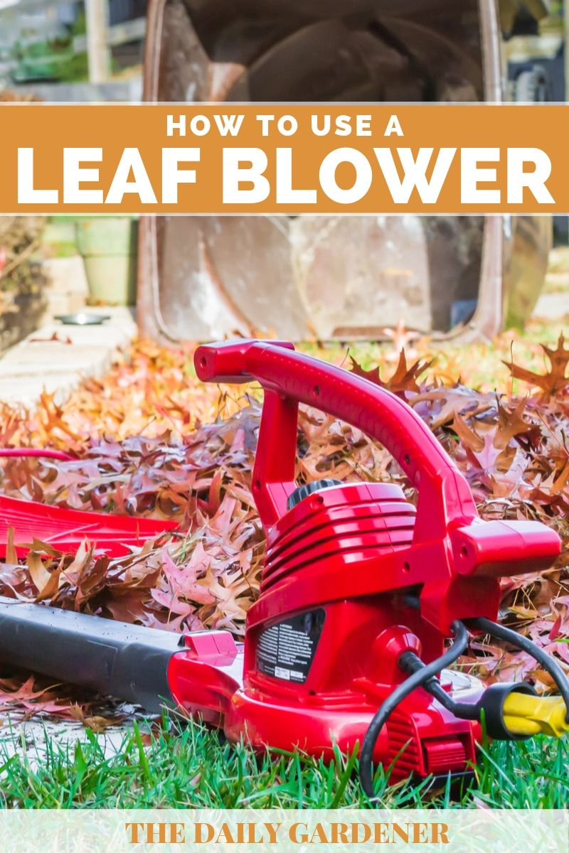 How to Use a Leaf Blower 2