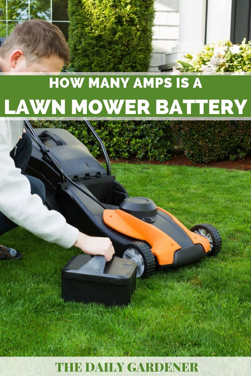 How Many Amps is a Lawn Mower Battery? - The Daily Gardener
