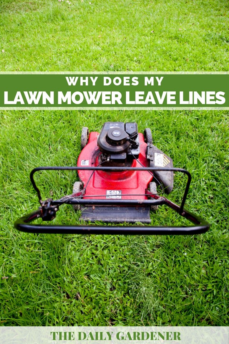 Lawn Mower Leave Lines 2