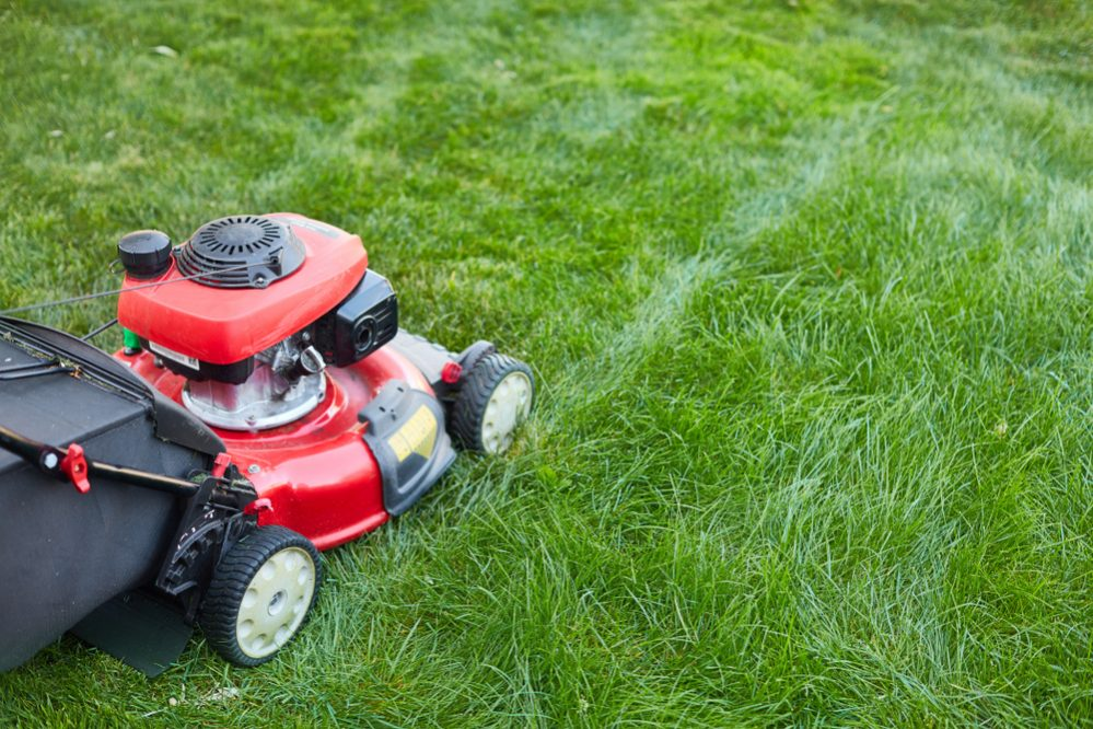 Lawn Mower Leave Lines
