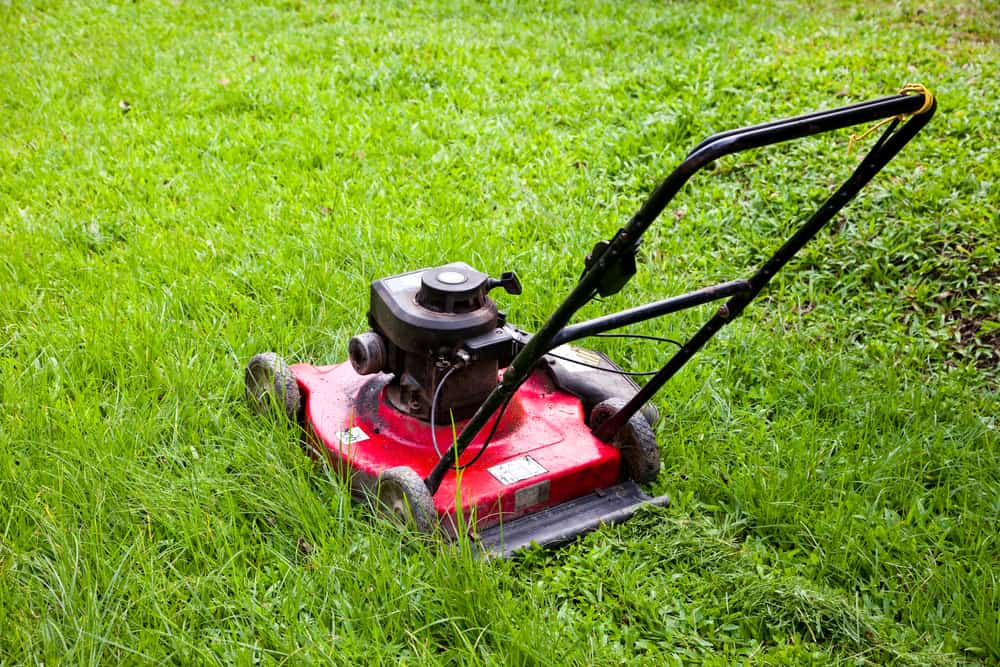 12 Maintenance Tips To Keep Your Lawn Mower In Top