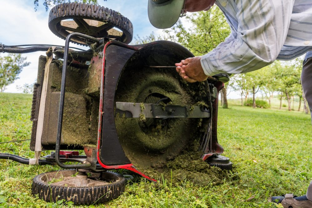 What to do if Lawn Mower Makes a Screeching Noise? - The Daily Gardener