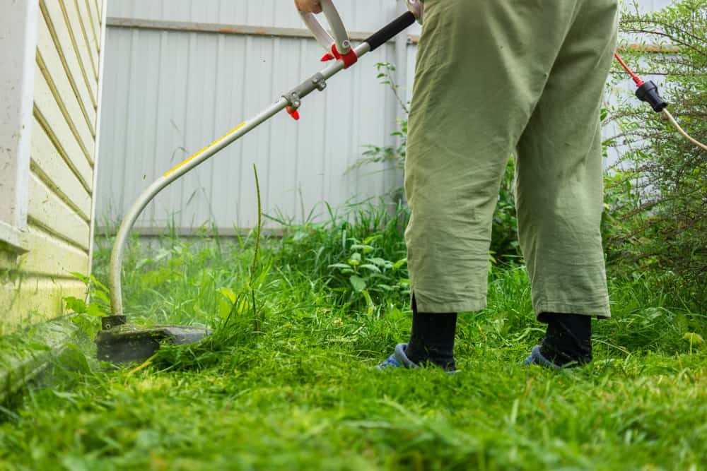 Start with mowing