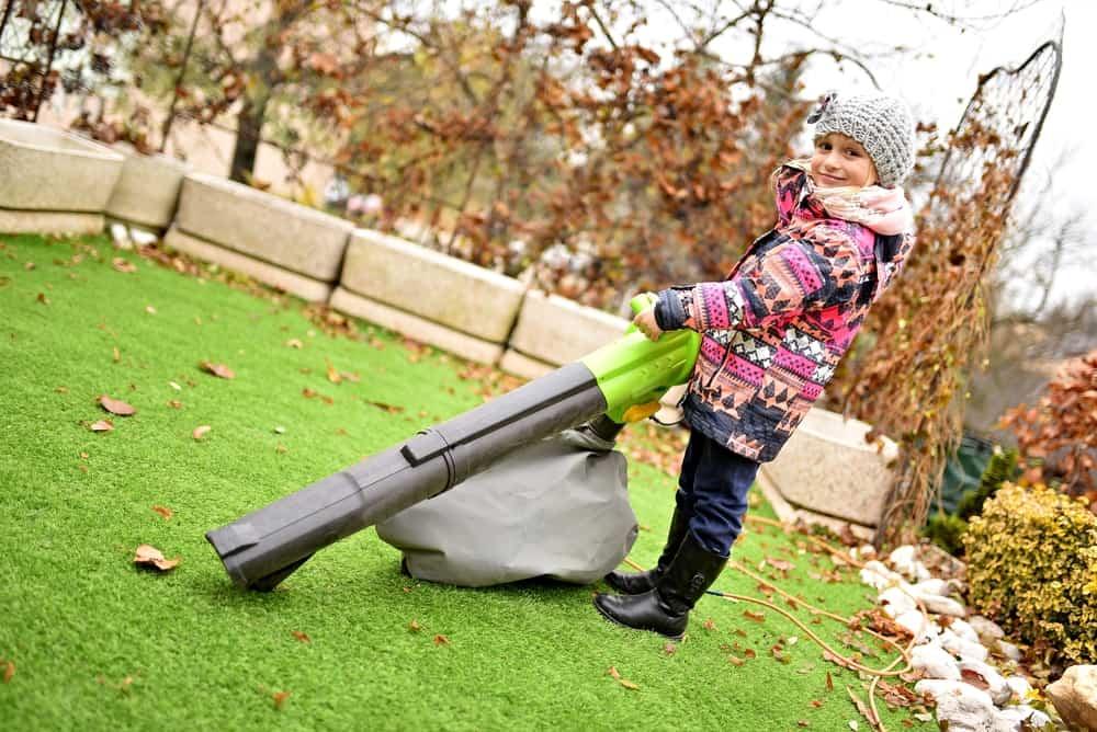 Vacuuming, mulching, and shredding