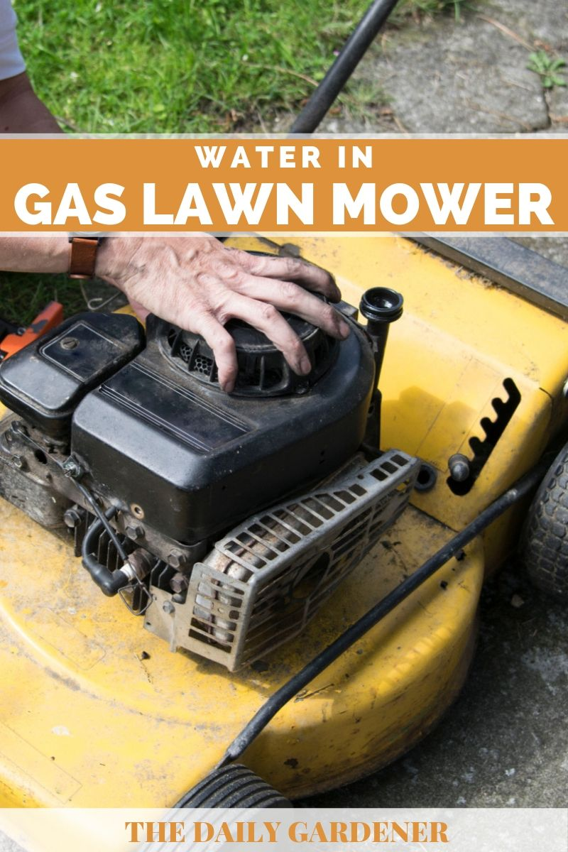 Water in Gas Lawn Mower 1