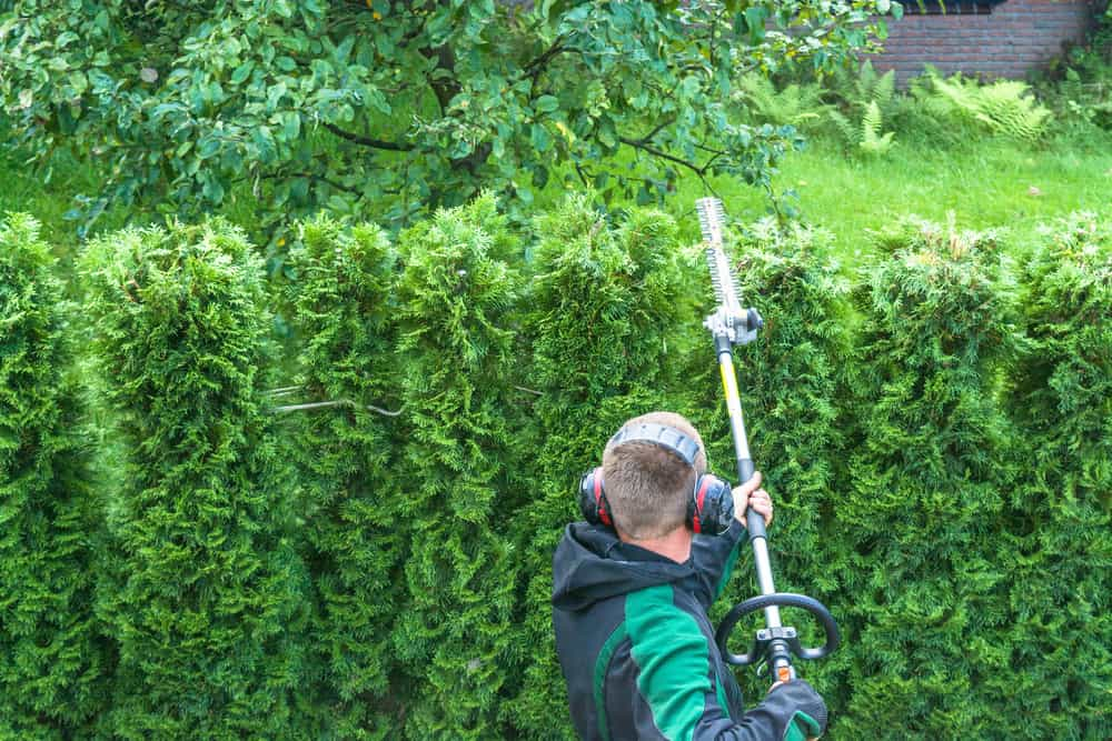 What is Best Pole Hedge Trimmer