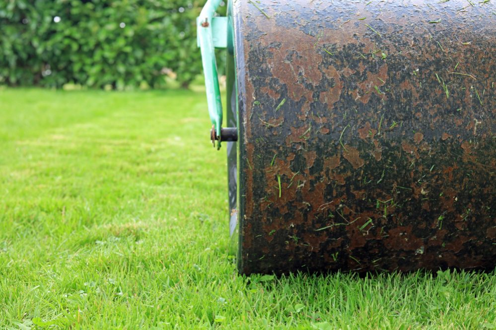 When to Roll Your Lawn