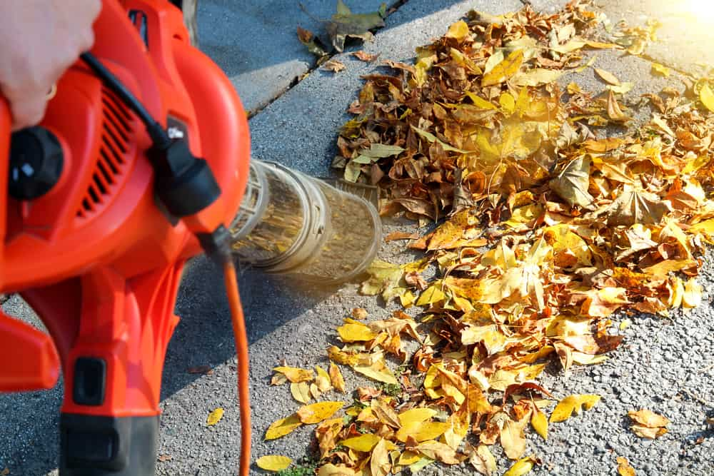 Work around the leaves to create a pile