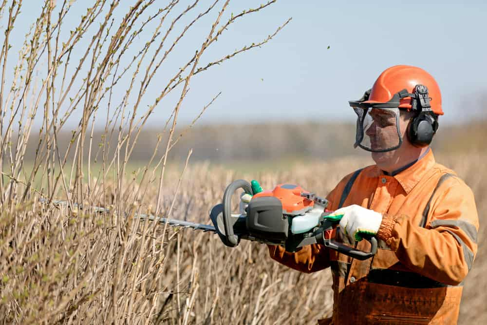 best gas powered hedge trimmer safety tips