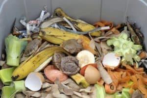 compost bin smell