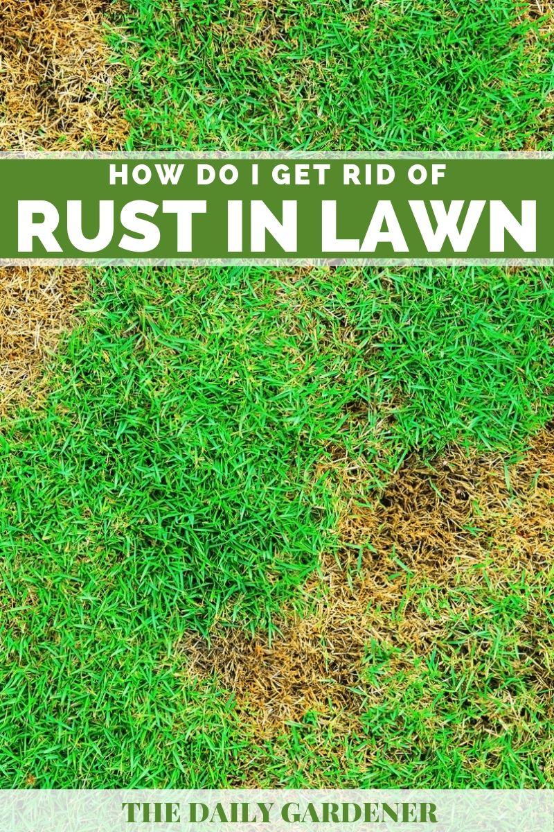 get rid of rust 2