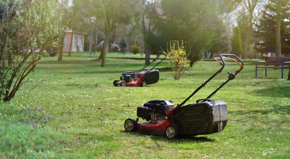7 Tips to Clean Your Lawn Mower - The Daily Gardener