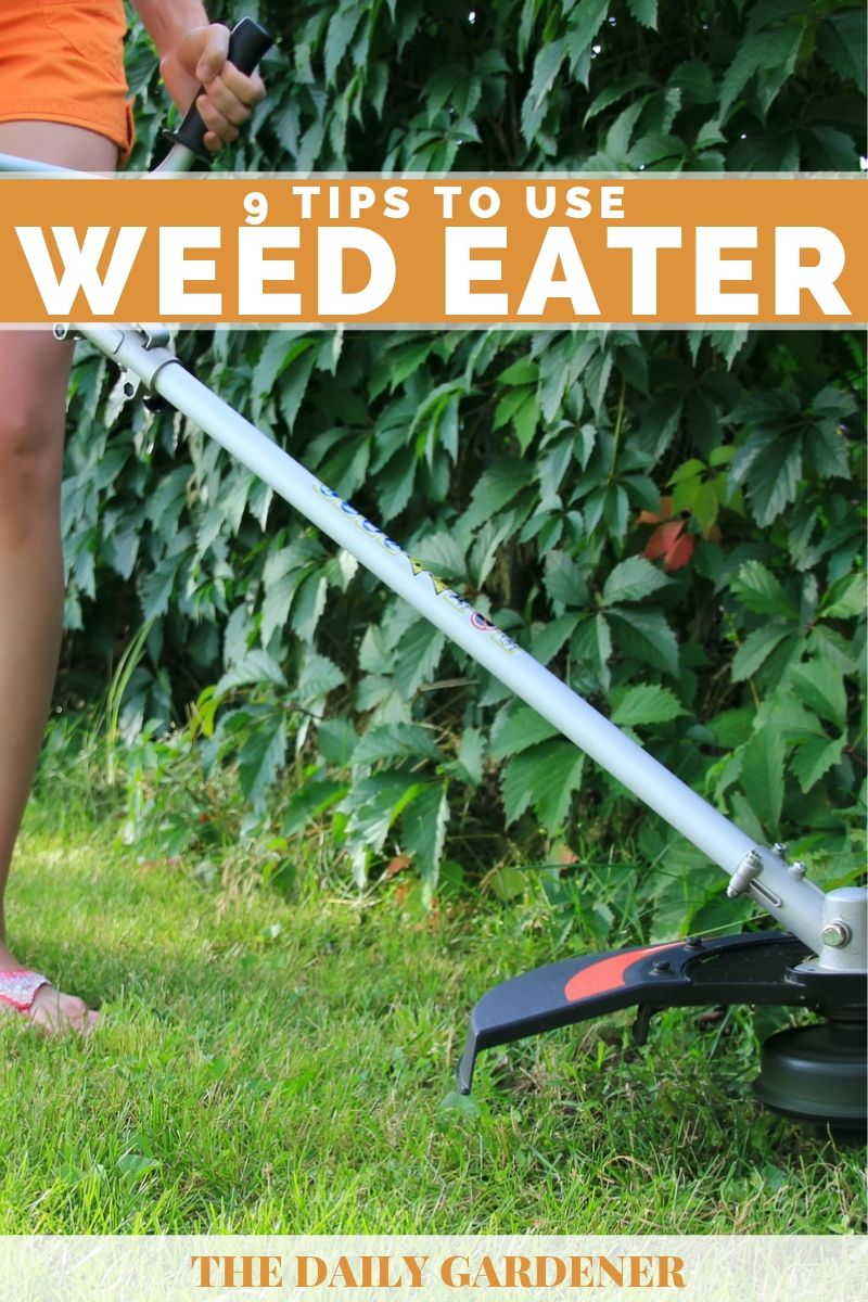 how to use weed eater 2