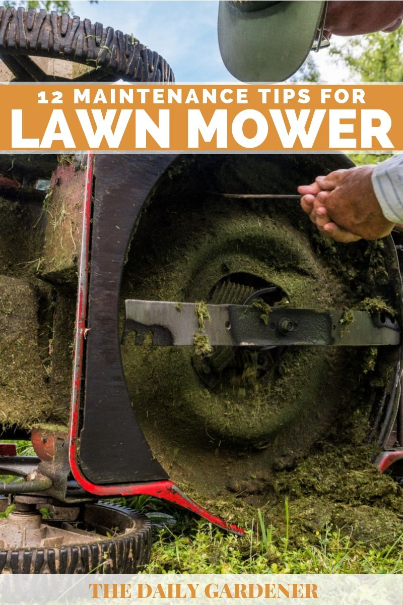 lawn mower maintenance 2