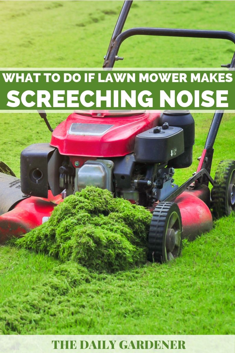 What to do if Lawn Mower Makes a Screeching Noise? - The