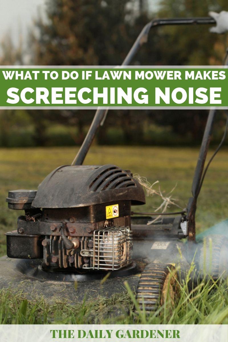 lawn mower noise 2