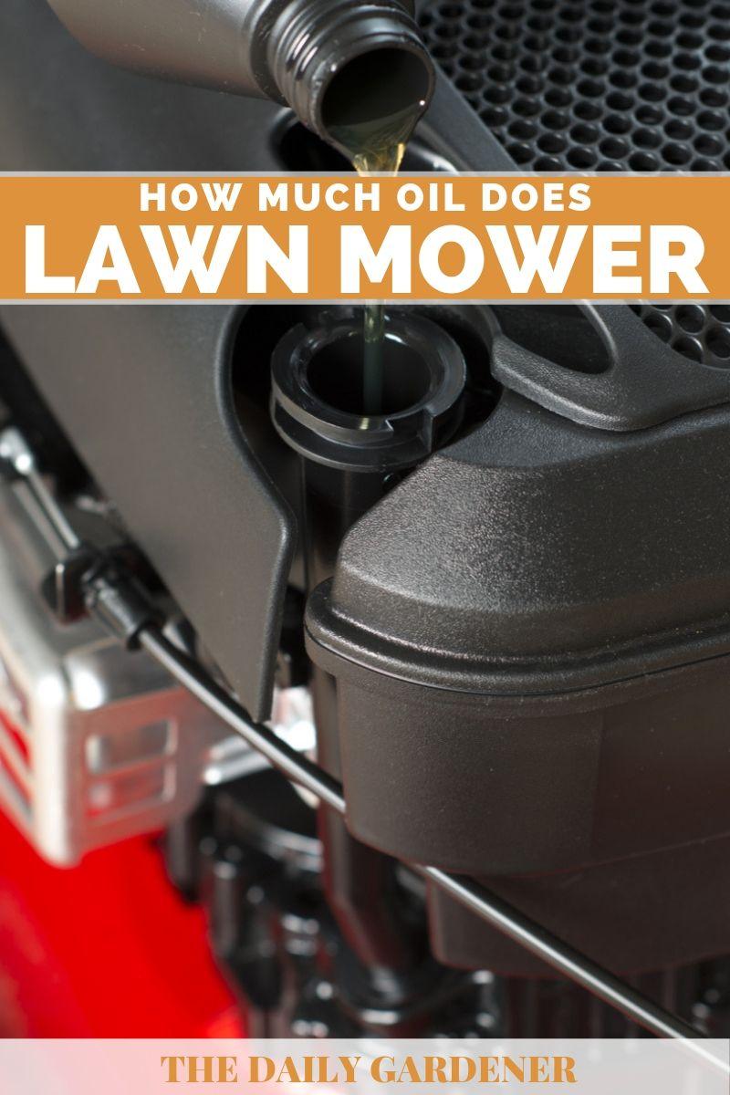 lawn mower oil 1