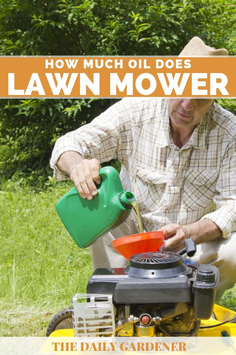 How Much Oil Does A Lawn Mower Take?