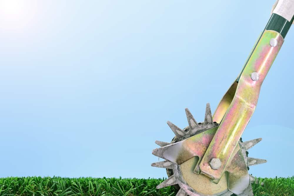 rotary lawn edger