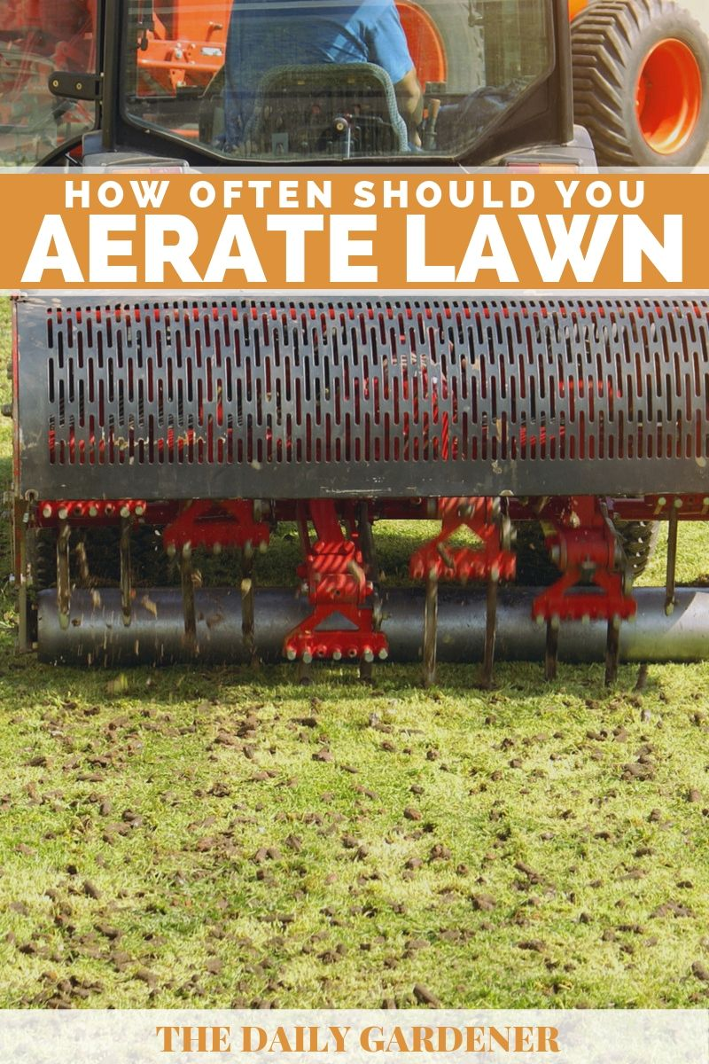 time aerate lawn 1