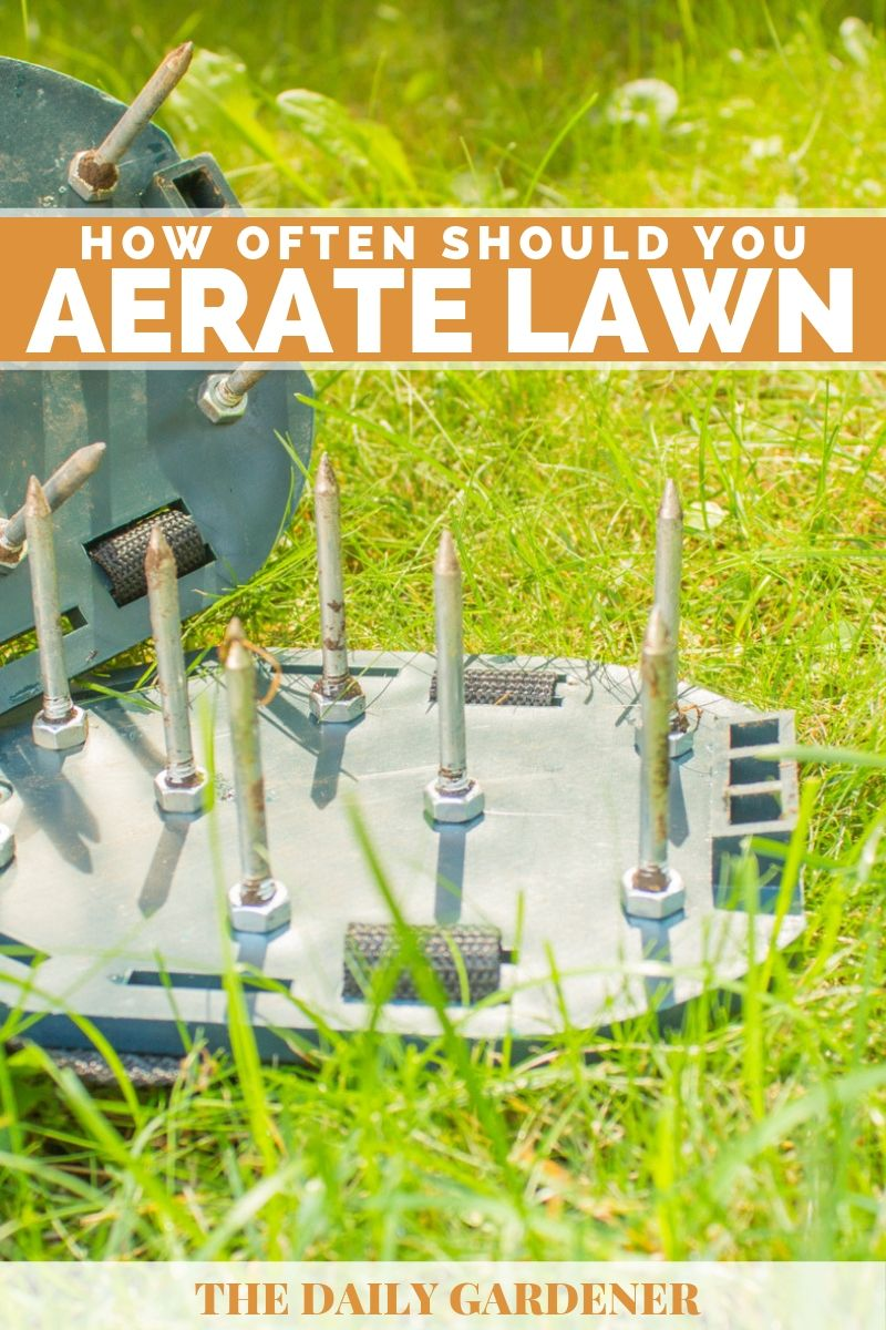 time aerate lawn 2