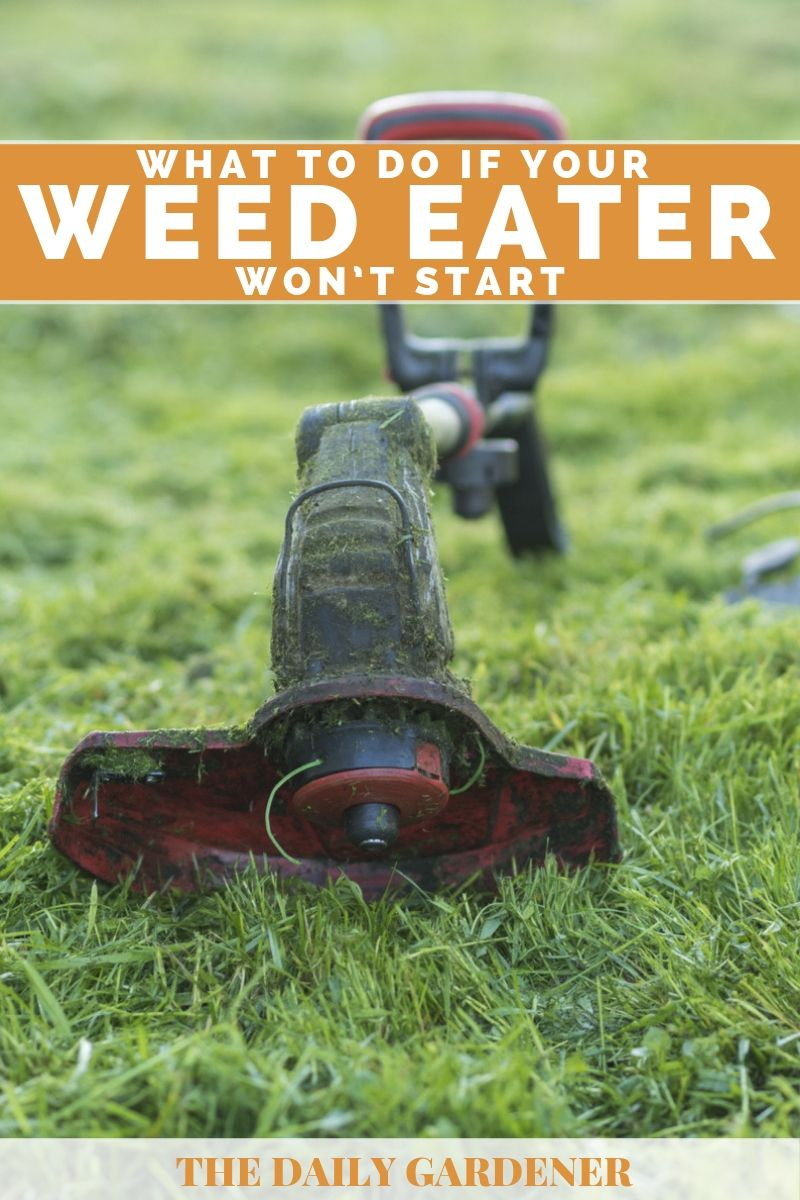 What to Do If Your Weed Eater Won't Start? - The Daily Gardener