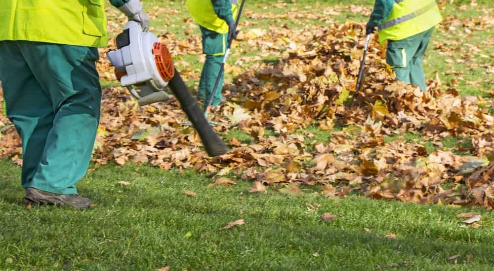 Best 4 cycle Leaf Blower