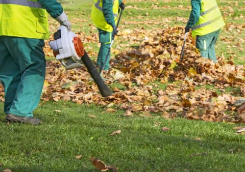 Best 4 cycle Leaf Blower Reviews (Updated 2019)