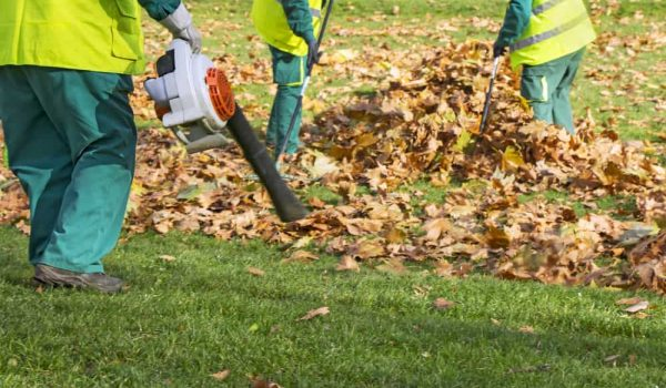 Best 4 cycle Leaf Blower