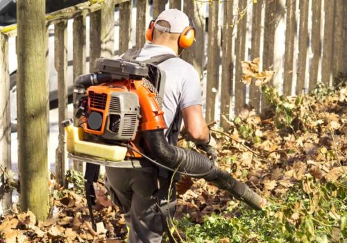 7 Best Backpack Leaf Blowers (Reviews & Guides 2019)