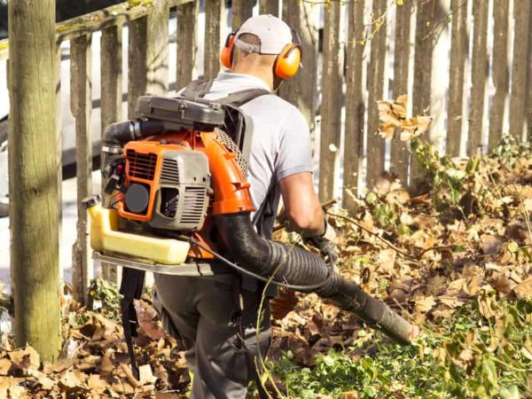 7 Best Backpack Leaf Blowers of 2021 – Reviews & Buyer Guides