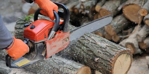 7 Best Chainsaws (Reviews & Guide 2019)