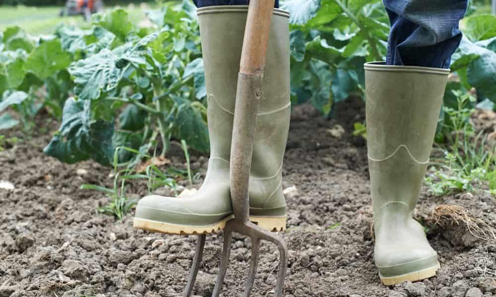 Best Garden Fork
