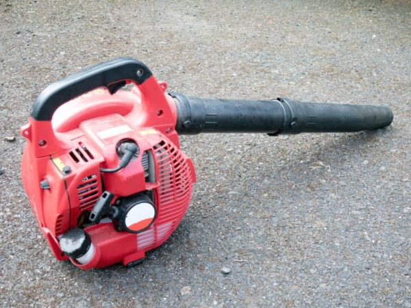7 Best Gas Leaf Blowers of 2021 – Reviews & Buying Guides