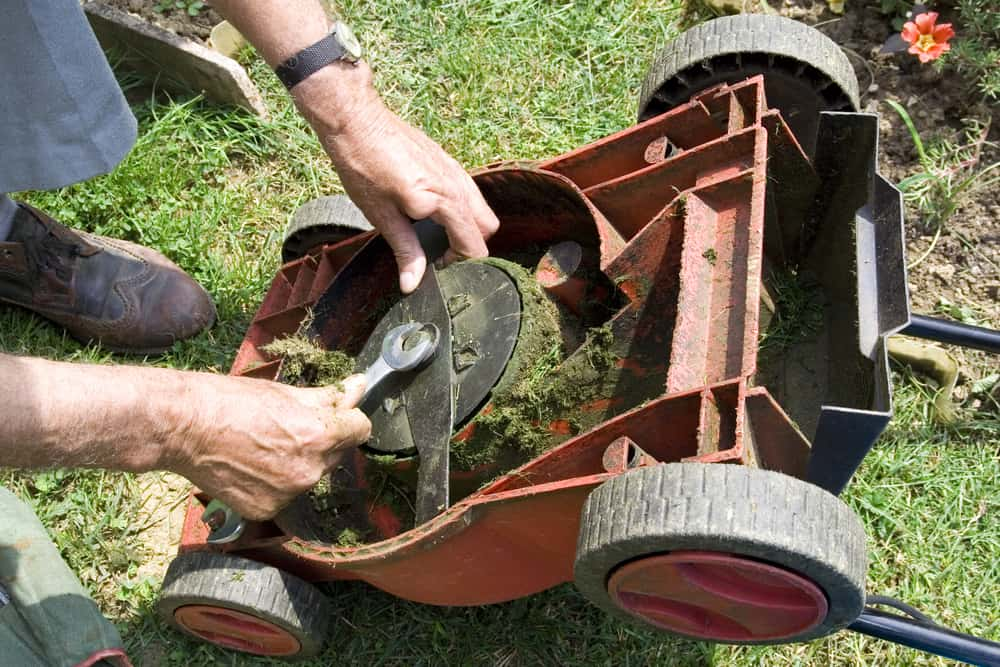 Best Lawn Mower Blade buying guide