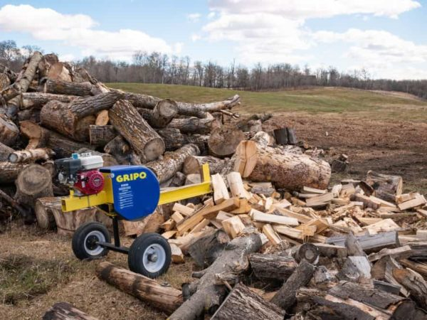 7 Best Log Splitters of 2021 – Wood Splitter Reviews