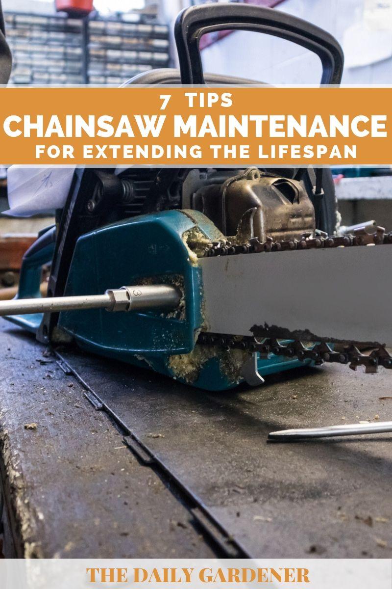 Chainsaw Maintenance 5
