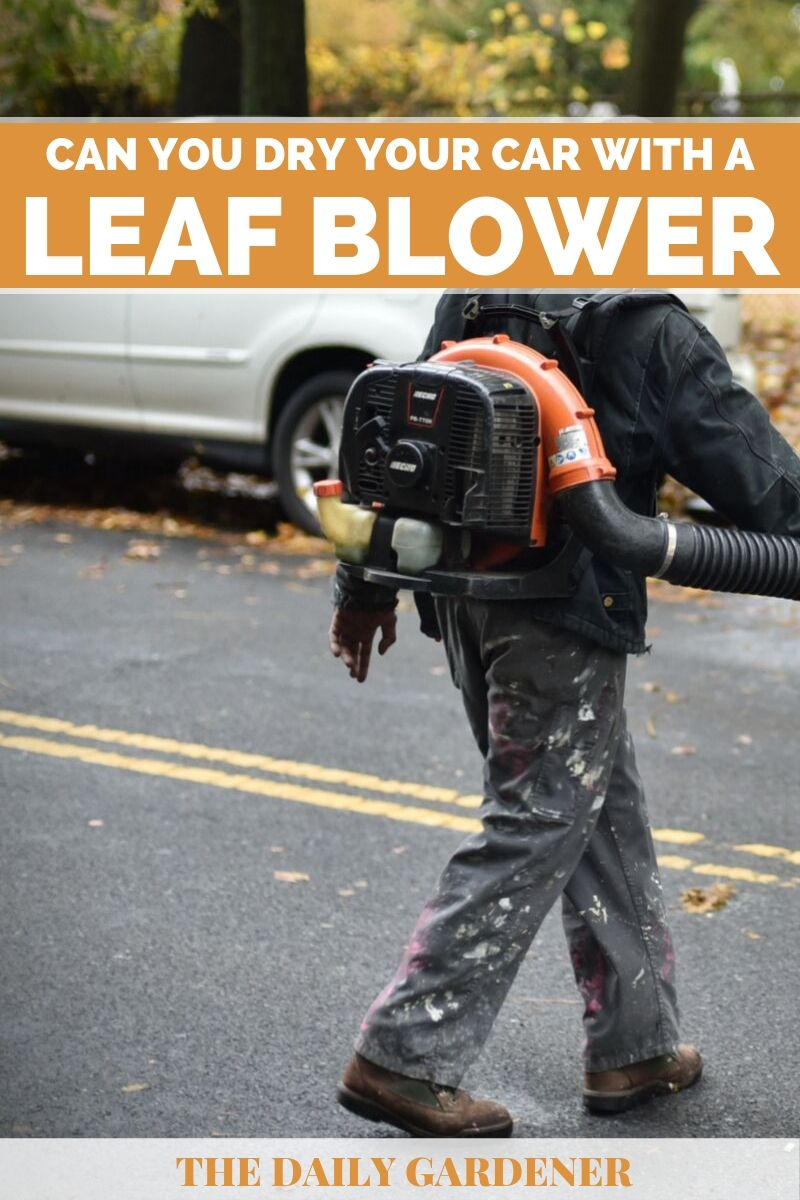 Dry Your Car with a Leaf Blower 1
