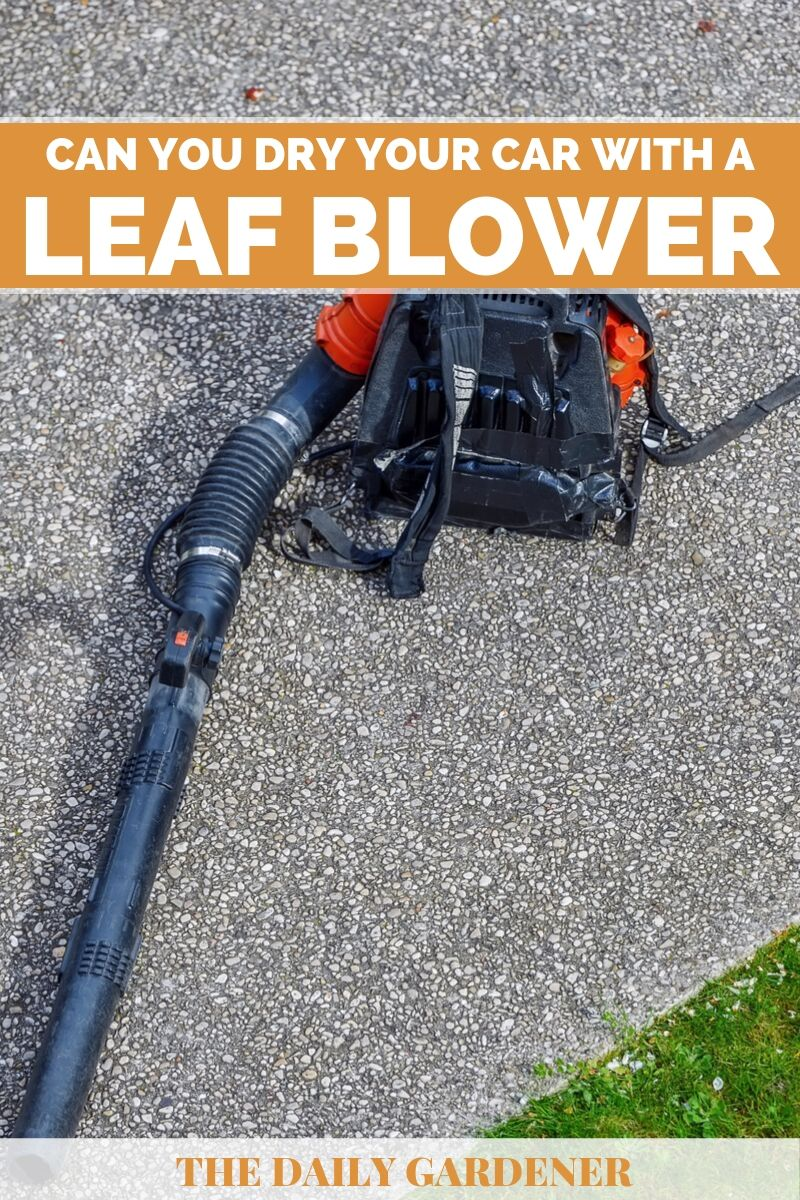 Dry Your Car with a Leaf Blower 2