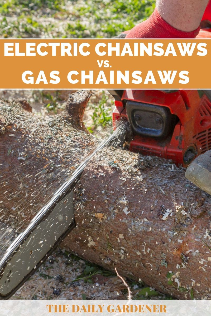 Electric vs. Gas Chainsaws 3