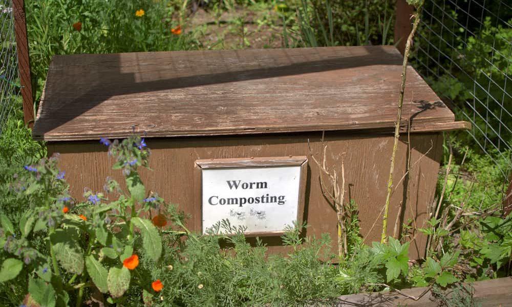 Flow-Through Worm Bin