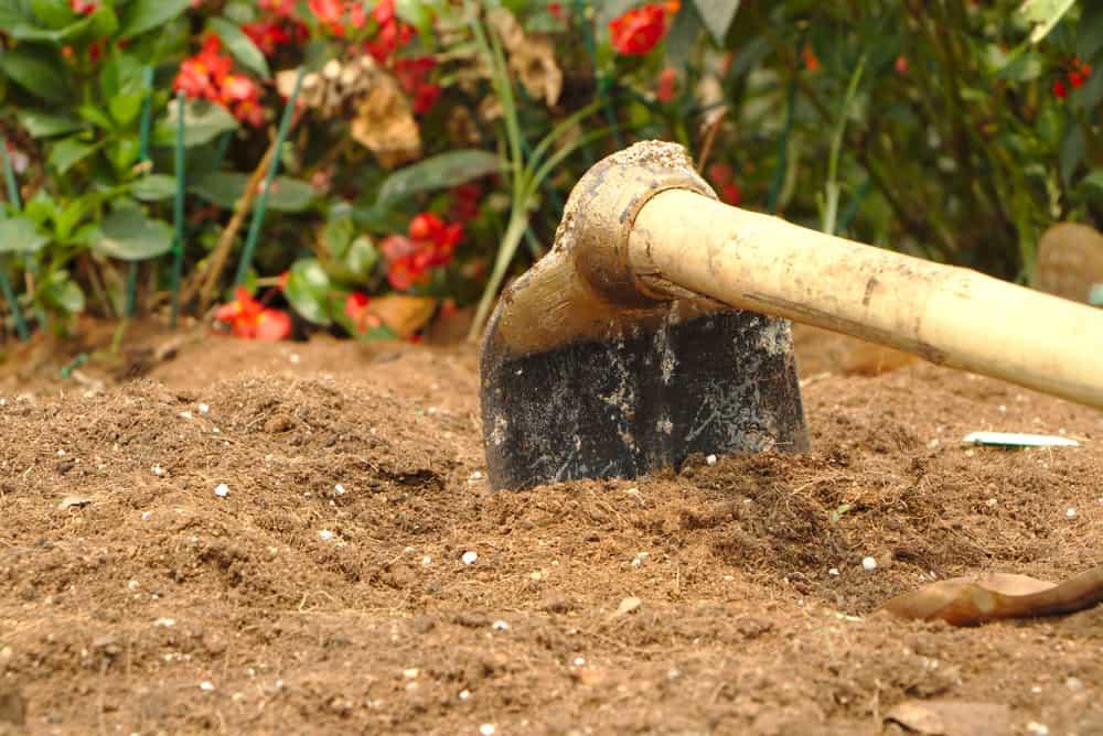 Gardening Hoe Tool