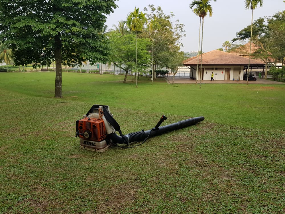 General tips for gas-powered leaf blowers