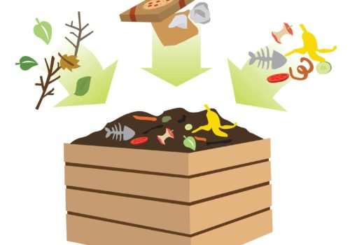 How Does a Compost Bin Work?