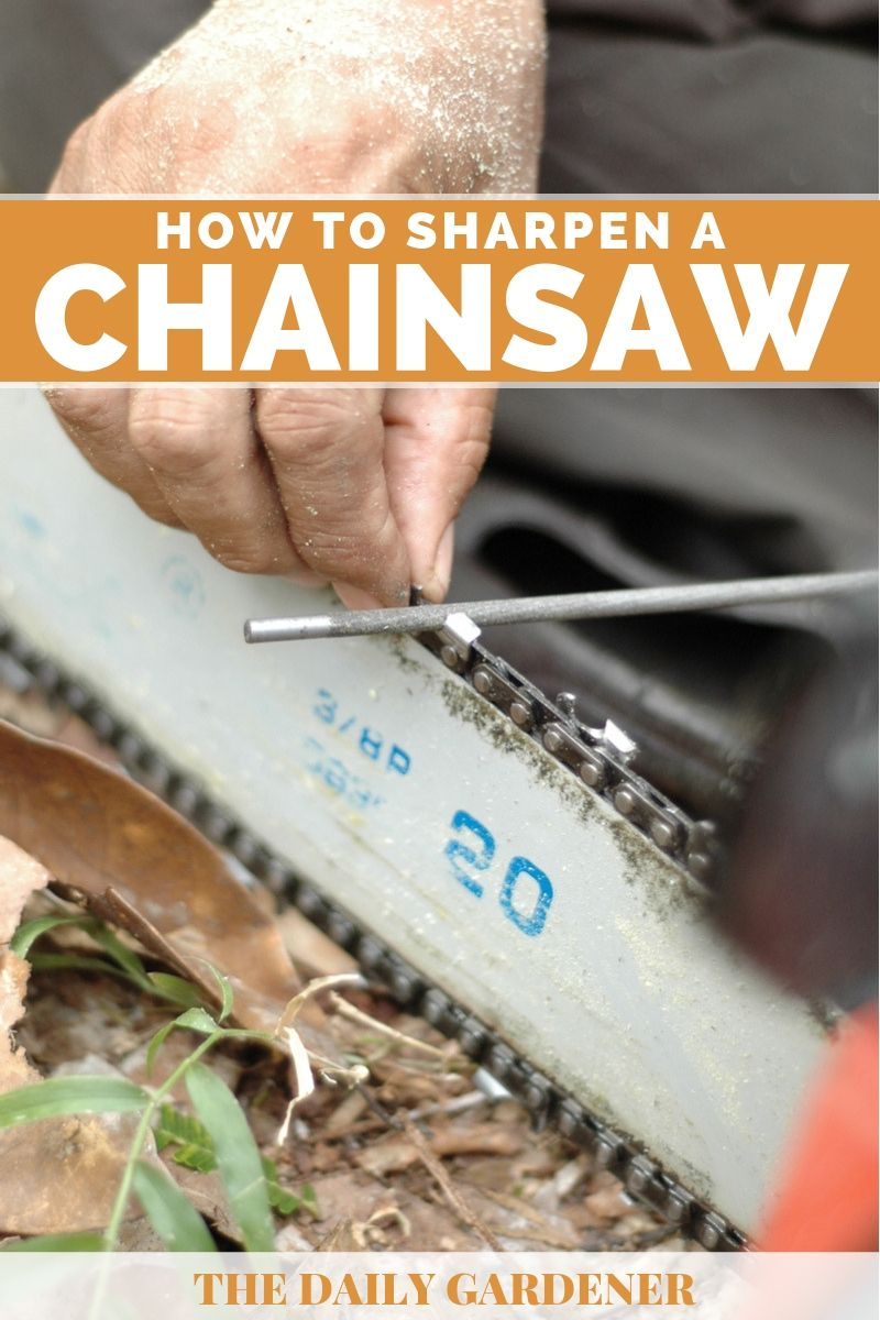 How to Sharpen a Chainsaw 1