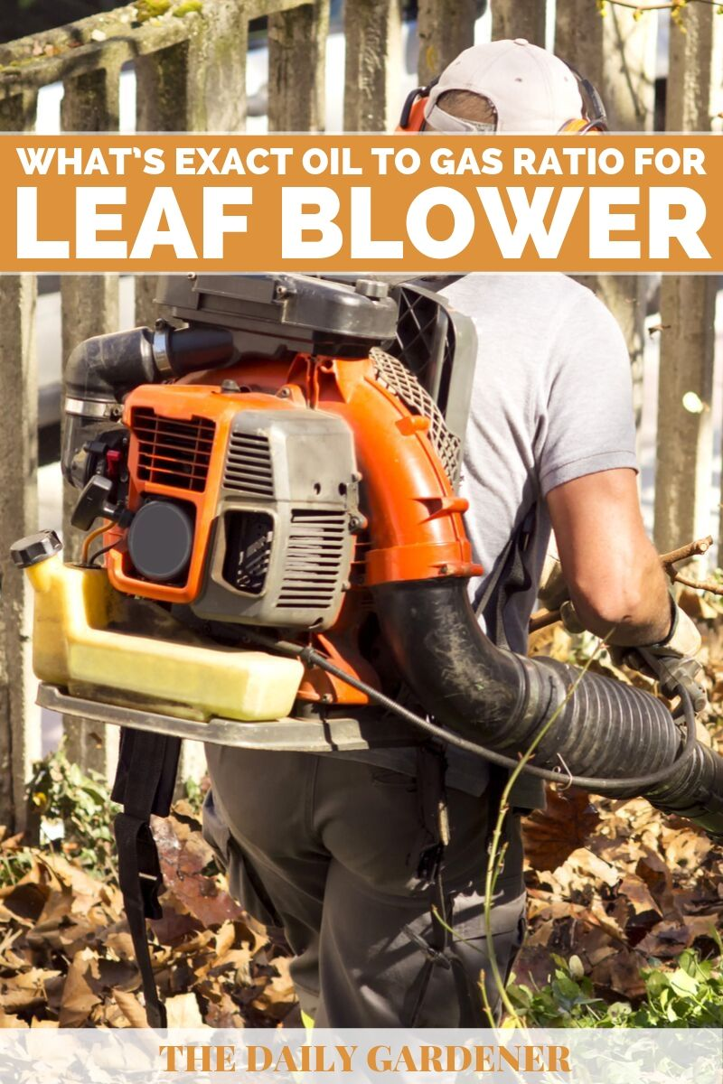 Oil to Gas Ratio for Leaf Blower 1