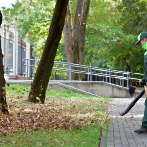 Oil to Gas Ratio for Leaf Blower