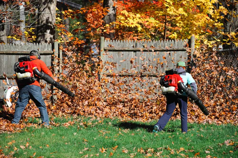 So which should you look at when buying a leaf blower