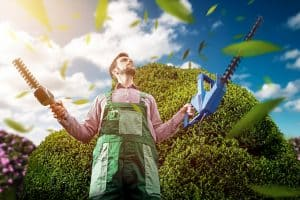 Use Your Hedge Trimmer like a Pro
